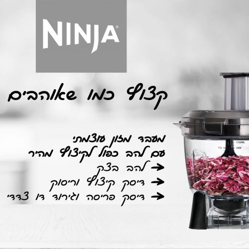 Ninja_CT683_2